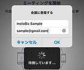 zoom_input