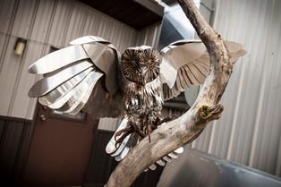 Barn Owl in Tree Sculpture.jpg
