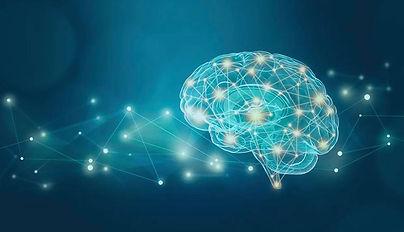 brain NP.jpg