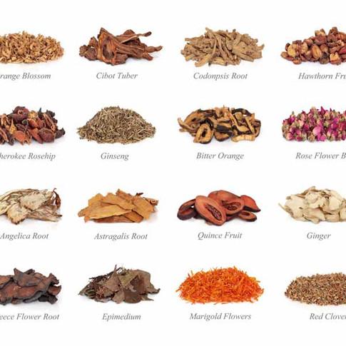 Chinese Herbal Medicine