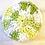 Thumbnail: Cotton face scrubbies