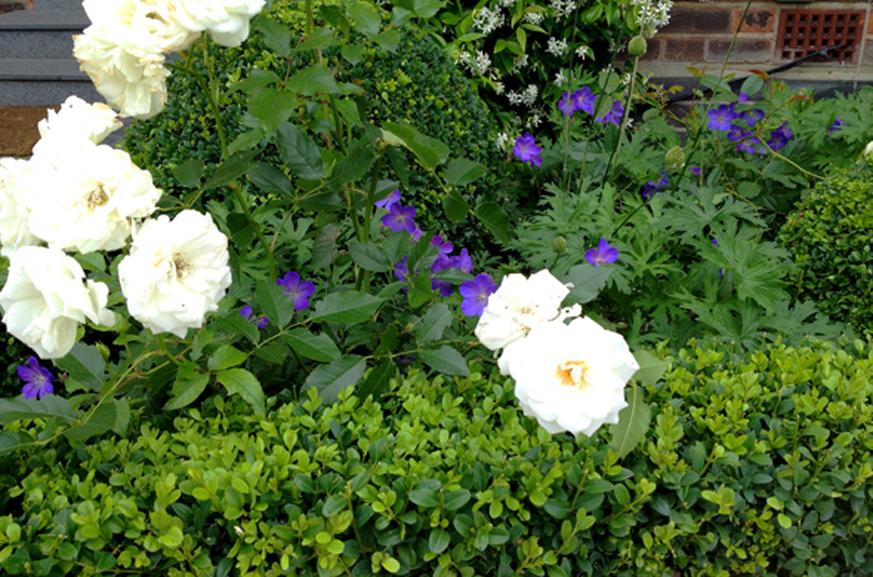 landscape gardeners north London