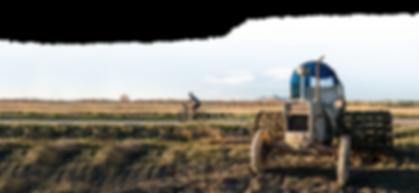 Carlos-emporda-tractor.png