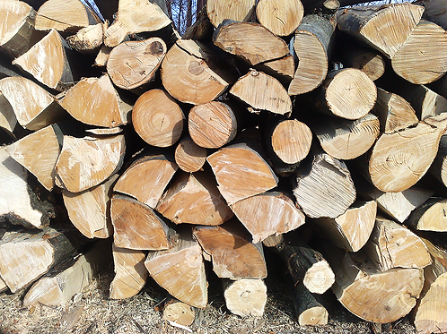 Blandet Løv Træ