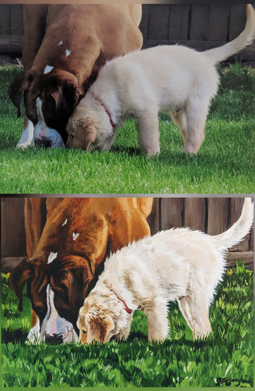 boxer & lab pup.jpg