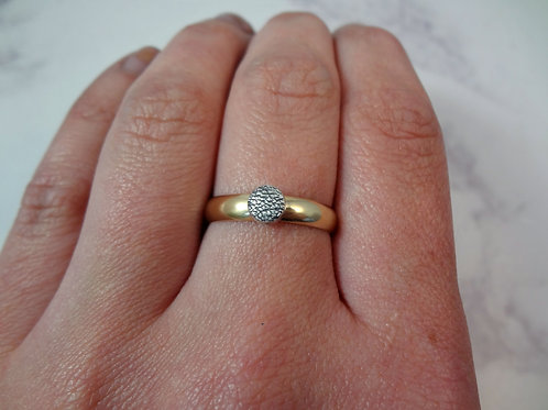 Pet Print with Wide 9ct Gold Ring Band