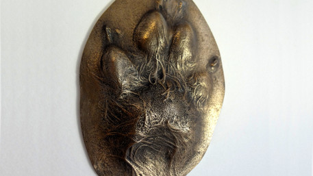 Cold cast bronze paw print for Pet memorial by Angelcasts in Manchester & London