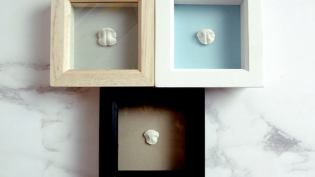 Framed dog nose casts from anywhere in the UK