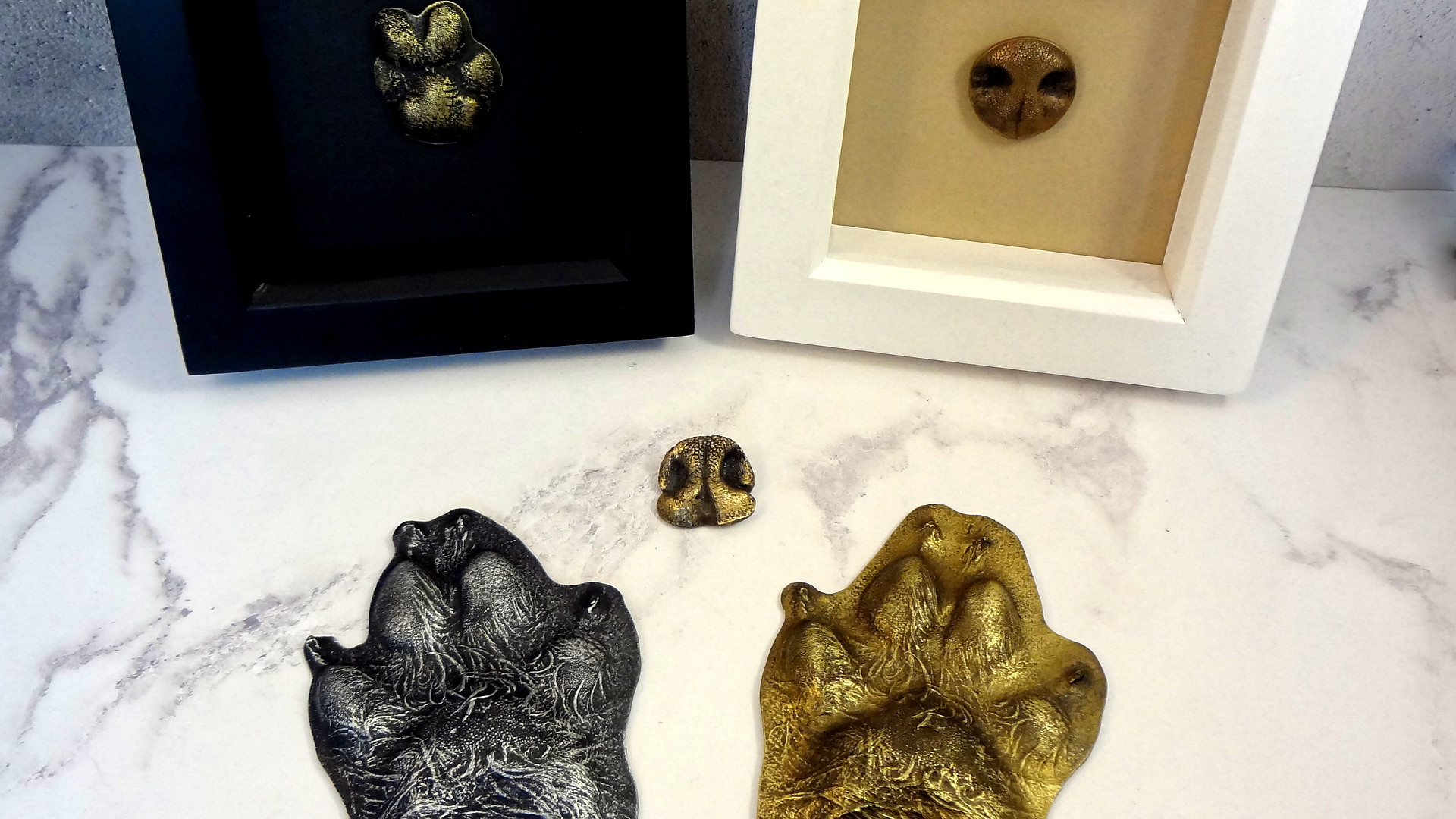 Beautiful nose casts and paw print for cats and dogs to be turned into beautiful framed keepsakes.