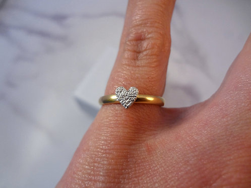 Mini Pet Print Ring in Silver with 9ct Gold band