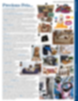 Precious Pets House & Garden Magazine featuring Angelcasts Pet Print Jewellery a UK small business ships worldwide with easy to use print kits free with every order