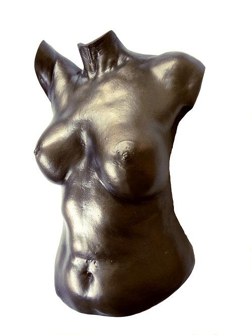 Plaster Torso in Faux Bronze