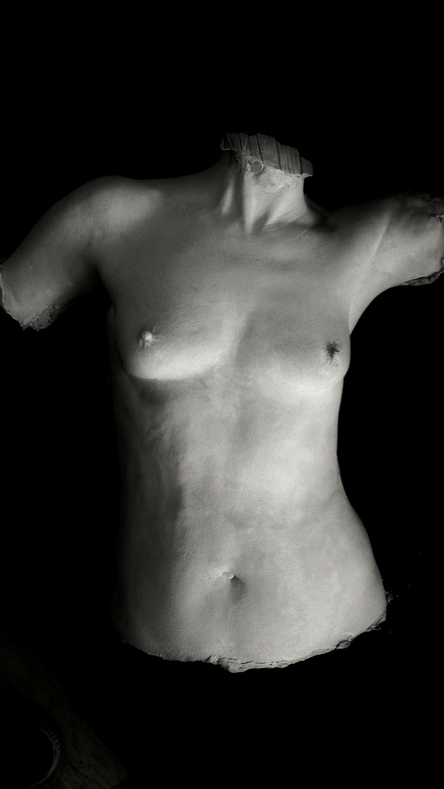 Classic Torso Cast by Angelcasts in London & Manchester