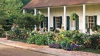 Southern Gardening Landscape.jpg
