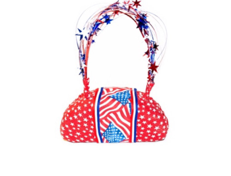 Fireworks Ribbon-Trimmed Mirco Bag