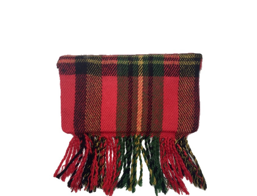 Plaid Party Fringe-Trimmed Woven Box Clutch