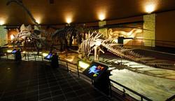 해남공룡박물관모형