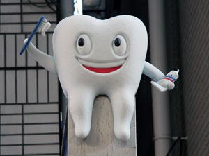 치과모형1