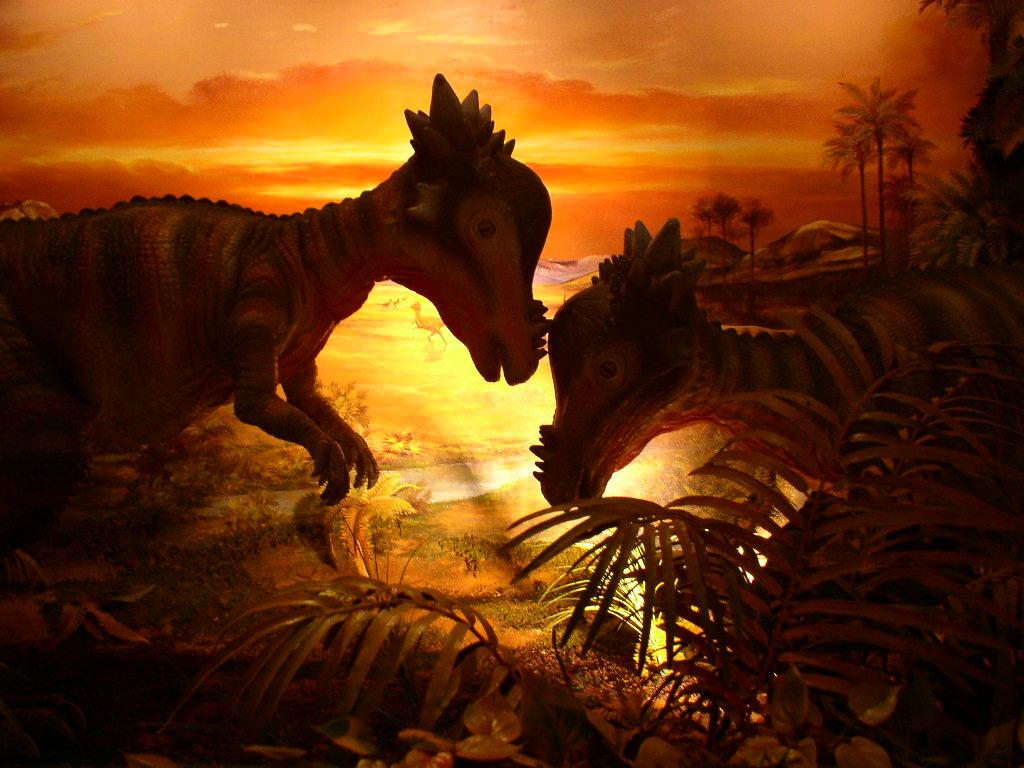 고성공룡 (6)