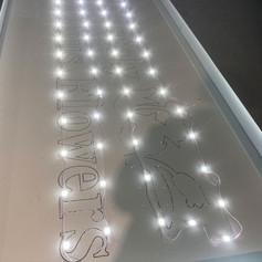 lightbox-composite-led-back-tray.jpg