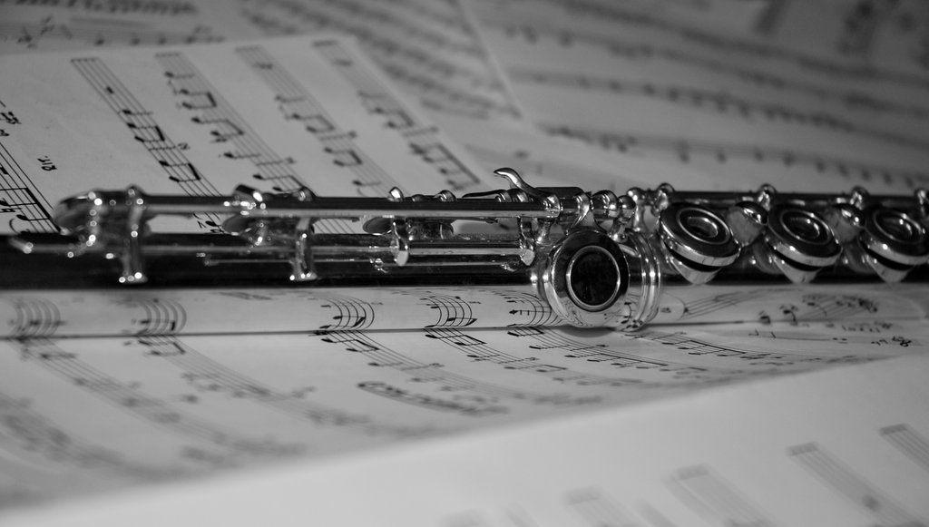 flute_serie_no_1___black_and_white_by_nyxvivendi-d4kdgz5.jpg