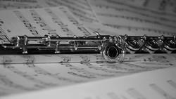 flute_serie_no_1___black_and_white_by_nyxvivendi-d4kdgz5.jpg
