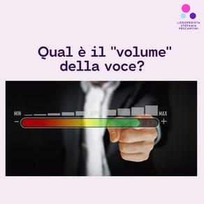 """Qual è il """"volume"""" della voce?"""