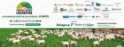 Convite Fórum da pecuária lucrativa