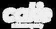 Cake Logo.png