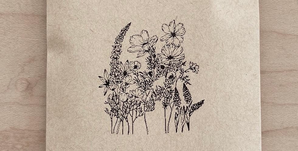 Topanga Wild Flowers Mix
