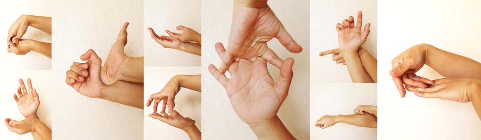 てのいうとおり / As hands say 2019