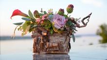 Фотосессия прекрасной флористики на Каме