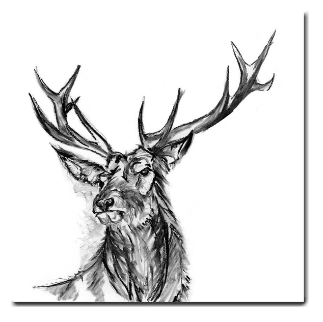 Stanley the Stag
