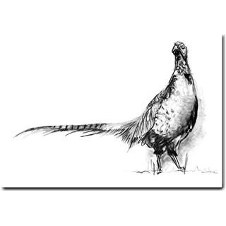 Phil the Pheasant