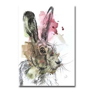 Harrison the Hare