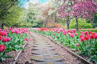 Buttom Garten.jpg