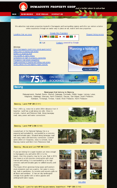 home page of real estate website.jpg