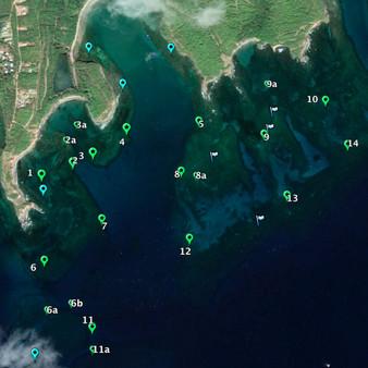 Benthic Groundtruthing GIS mapping Carib Marine
