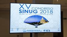 Report from SINUG XV  15-17 November 2018 Seville