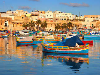MIPS ANNUAL CONGRESS IN MALTA - WELCOME MESSAGE FROM THE MEETING CHAIR, PROF. ALBERTO VELLA