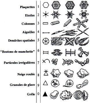 Tableau de classification des cristaux de neige fraîche