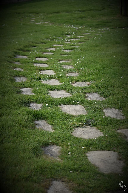 Chemin Natacha Doleux (Copier).jpg