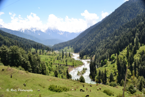 Overview of Aru Valley