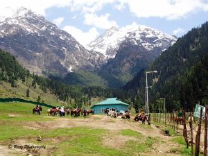 Aru Valley