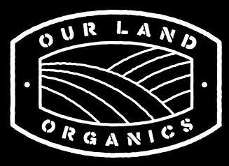OLO logo 2.jpg
