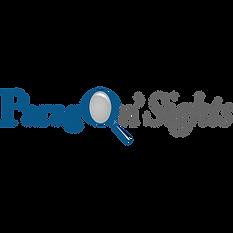 ParagonNSights.png