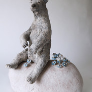 Bear on a rock with forget me nots