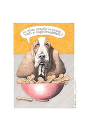 Large Dog's Breakfast.JPG
