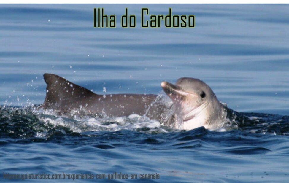 Ilha do Cardoso