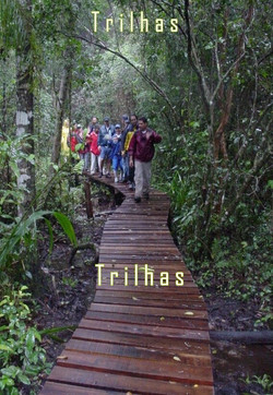 06 Ilha Comprida - trilhas